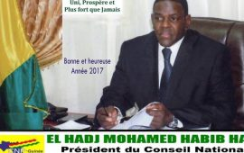 Forum Ivoiro-Guinéen de la CGECI Académie 2017 : Le président El Hadj Mohamed Habib Hann salue et félicite l'initiative