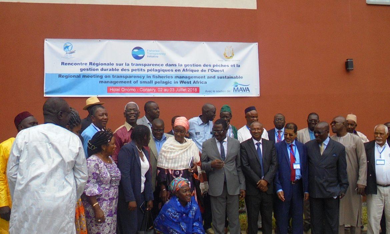 Conakry : Tenue d'une Rencontre Régionale sur la Transparence dans la Gestion des Pêches et de la gestion durable des petits Pélagiques en Afrique de l'Ouest