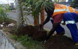 Célébration de l'an  60 de la Guinée: La Commission d'organisation à pied d'œuvre   pour rendre la ville   plus  belle