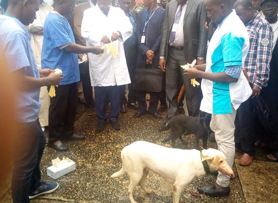 Conakry : Lancement de la Campagne  de vaccination basée sur le risque contre la rage