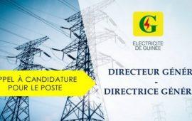 APPEL À CANDIDATURES : DIRECTEUR GÉNÉRAL / DIRECTRICE GÉNÉRALE ÉLECTRICITÉ DE GUINÉE (EDG SA)