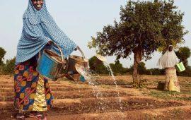Afrique : La BM investira plus de 5 milliards USD dans les zones arides