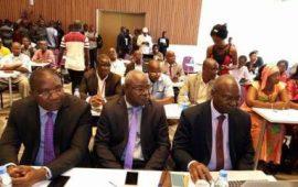 Electricité :Les aurorités Guinéennes en collaboration avec leurs partenaires lancent le projet d'interconnexion Guinée-Mali