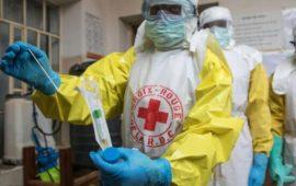 Guinée forestière: Un premier cas de fièvre LASSA enregistré dans la préfecture de Yomou
