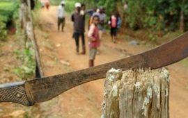 Nzérékoré : Un orphelin de 13 ans perd ses (2) doigts pour avoir cueilli une mangue dans un champ d'autrui